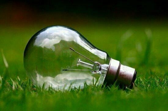 «Час Земли — 2021» посвящён открытости экологической информации
