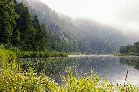 В Белгородской области планируют очистить 500 км речных берегов