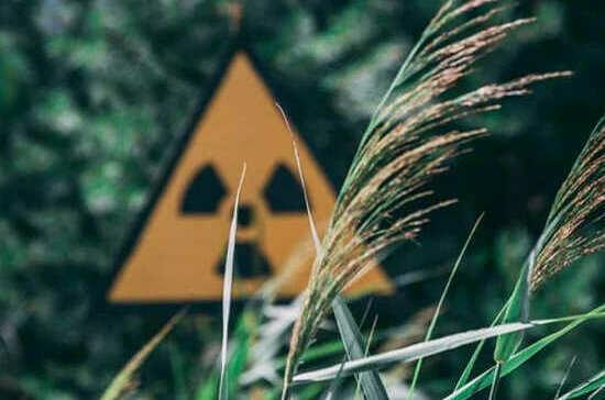 В России появится единая система мониторинга радиационной обстановки