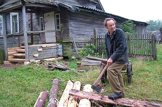 Отчётность граждан при заготовке дров предлагают упростить