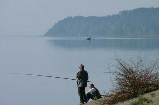 Разведение рыбы в больших прудах могут упростить
