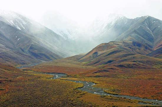 Россиянам хотят подарить «арктический гектар»