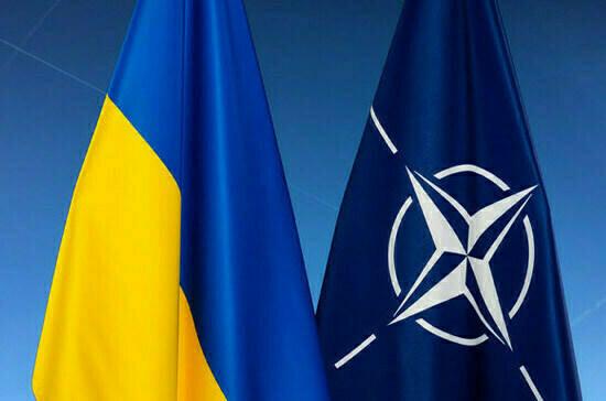 В США поддерживают вступление Украины в НАТО