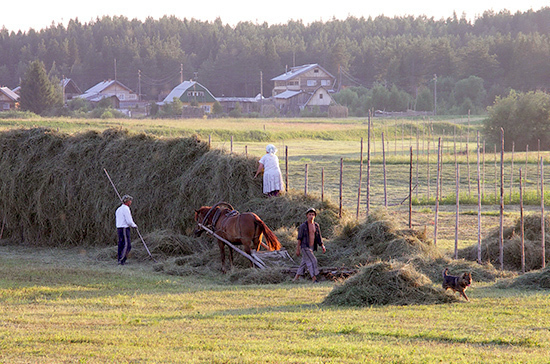 Фермерам хотят дать право строить дома на сельхозземлях