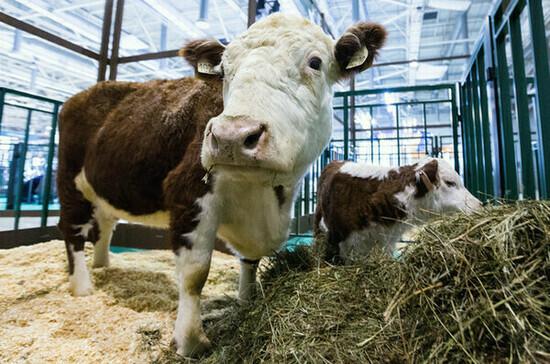 Регистрировать кормовые добавки предлагают по новым правилам