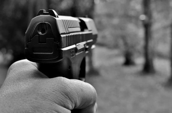Медицинское освидетельствование для владения оружием предлагают ужесточить