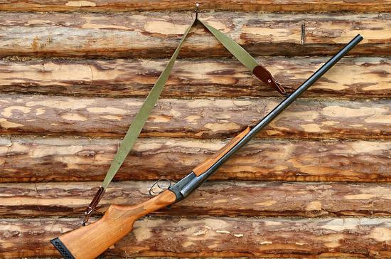 Законопроект об охоте в лесах «зелёных зон» прошёл второе чтение