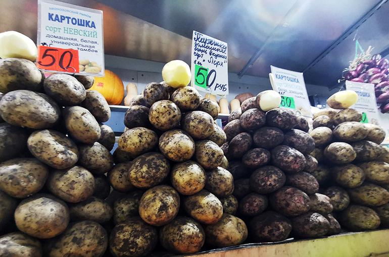 Росстат: картофель с начала года подорожал на 50,9%, капуста — на 37,8%