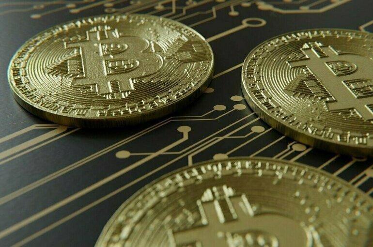Эксперт по финансам назвал лучший способ вложений в криптовалюту