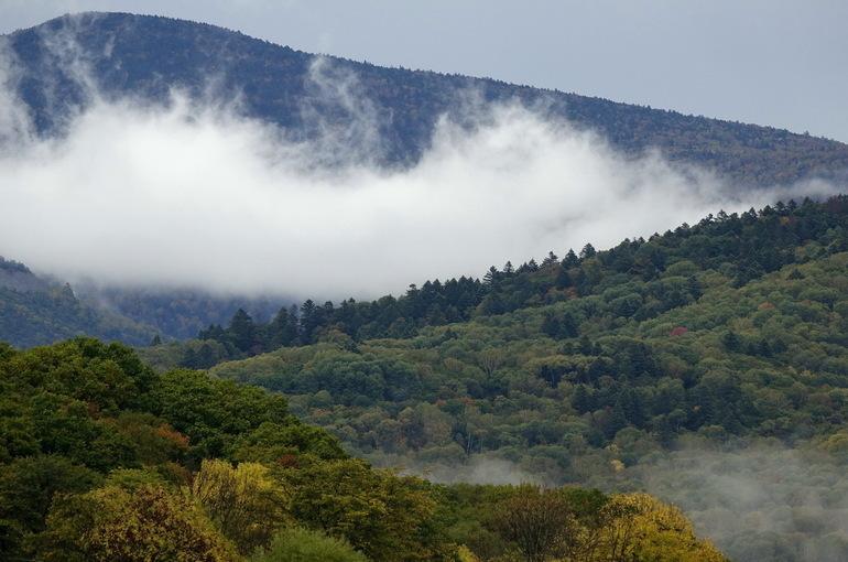 В Приморье экообразование станет комплексным