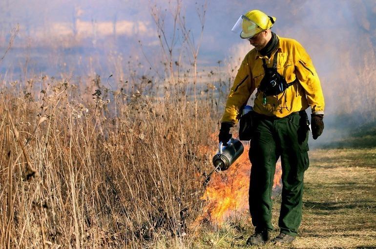 Эксперты назвали главные причины пожаров в сельской местности