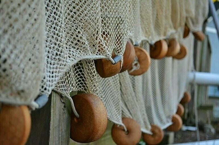 Рыбоводство в больших прудах на водотоках хотят упростить