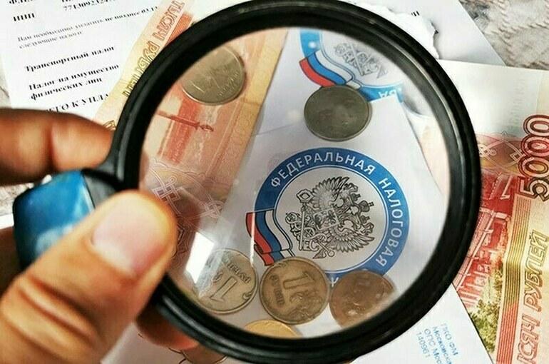 Кабмину могут дать право ограничивать доступ к бухгалтерским отчетам