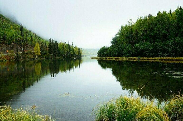 В Санкт-Петербурге открылся Невский международный экологический конгресс