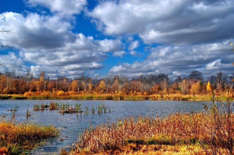 Яцкин назвал основные элементы эффективного госуправления водными ресурсами