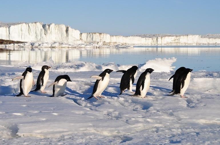 США усиливают геополитическую активность в Арктике из-за таяния льдов