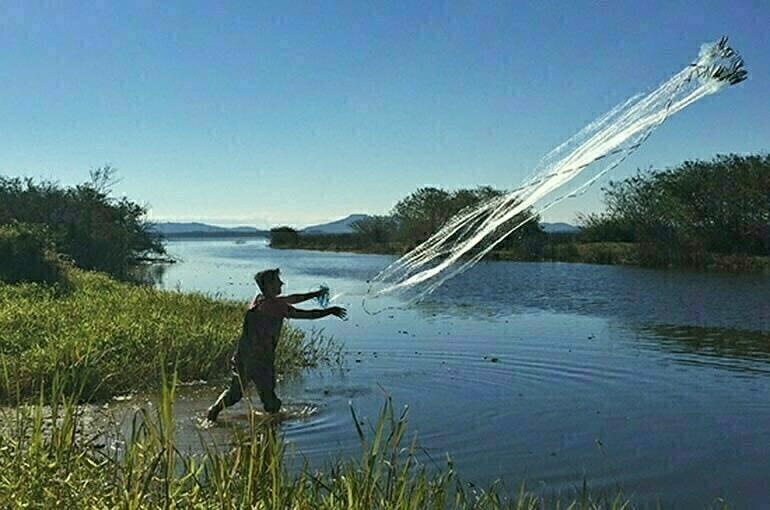 В больших прудах могут упростить разведение рыбы