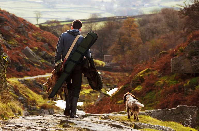Права на охотничьи угодья предлагают разрешить передавать третьим лицам