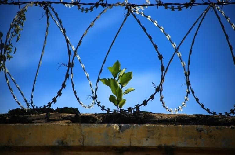 Более 10 тысяч заключённых планируют сдавать экзамены в 2021 году