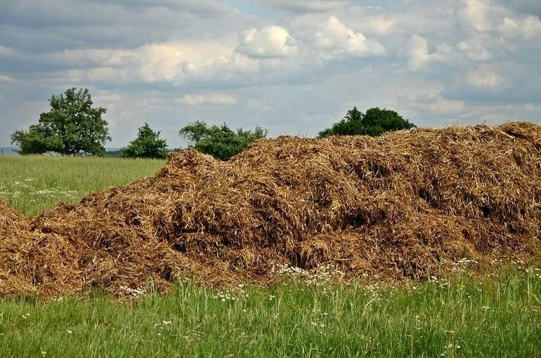 Органические удобрения исключат из списка агрохимикатов