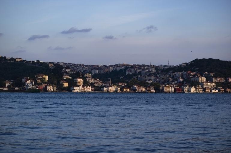 Учёные назвали версию появления слизи в Мраморном море
