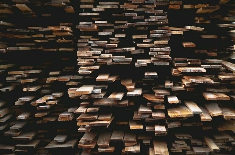 В Лесном кодексе хотят уточнить понятие лесоматериалов