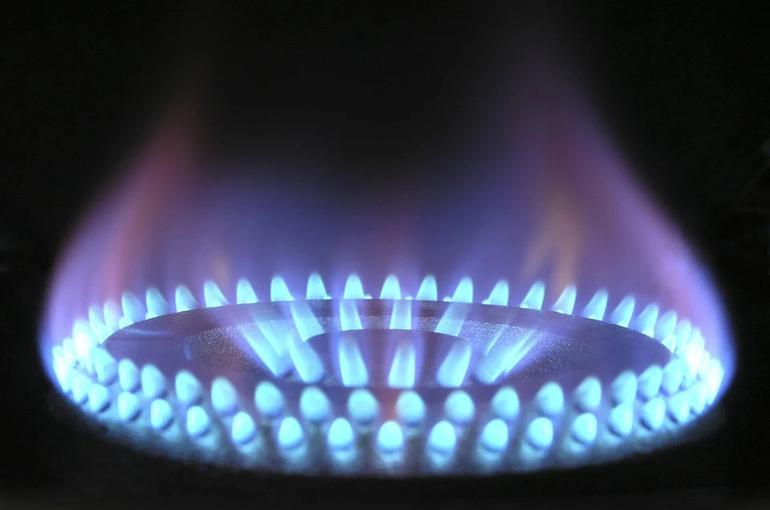 Путин подписал закон о бесплатном подведении газа к участкам