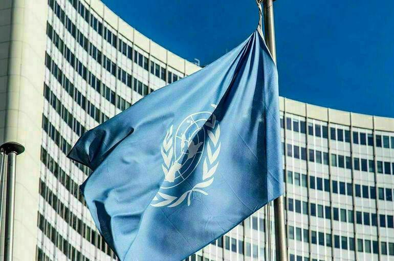 Россия внесёт до трёх миллионов долларов в бюджет Программы добровольцев ООН