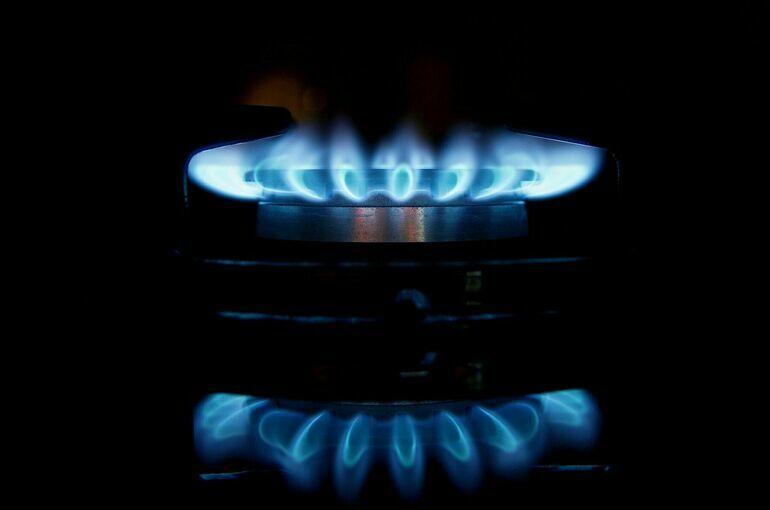 Евродепутаты призвали начать расследование против Газпрома из-за цен на газ