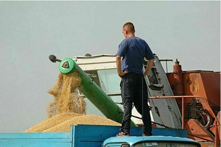 Данные о зерновой продукции соберут в единую информационную систему