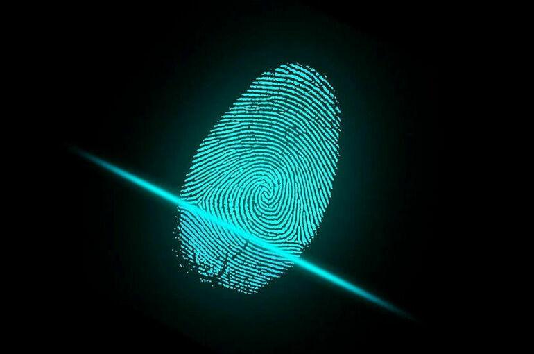 Сенаторы предложили усилить защиту информсистем с биометрией россиян