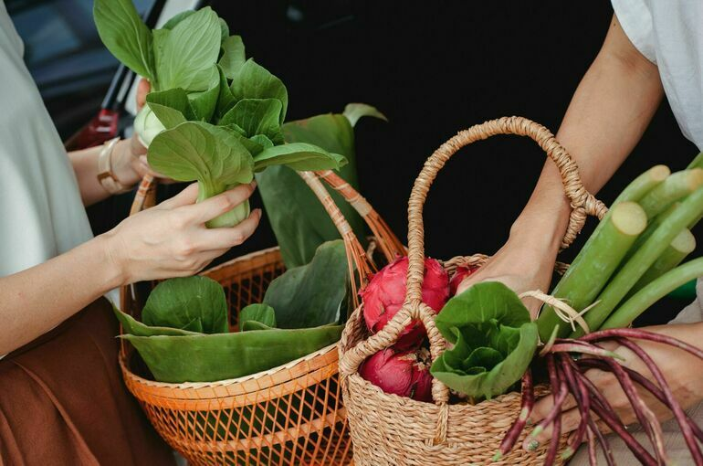 Матвиенко поддержала идею сбора фермерской продукции на местах по госценам