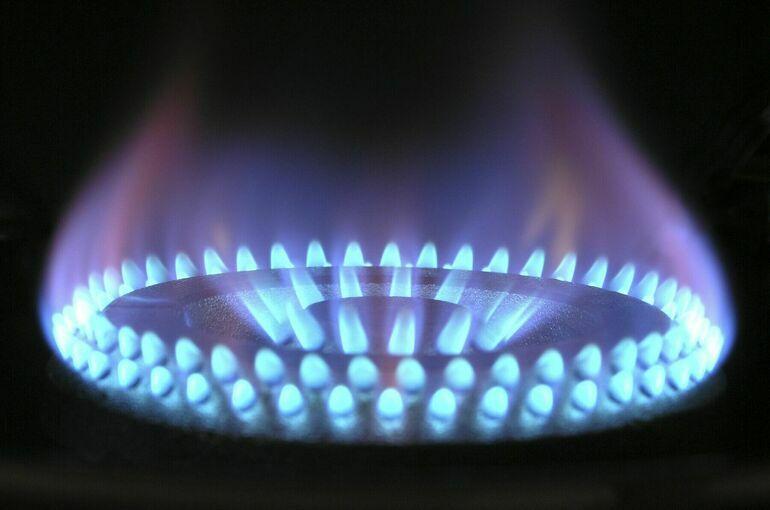 ФАС рекомендовала увеличить поставки природного газа на биржу