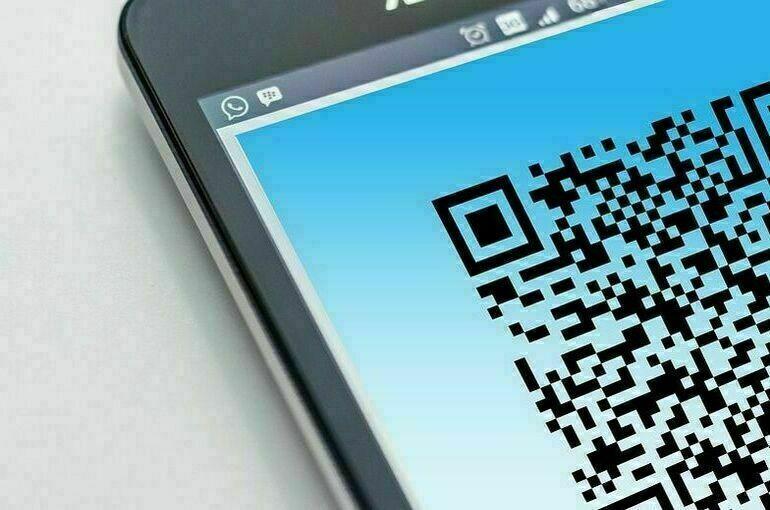 В Самарской области введут QR-коды для ряда общественных мест