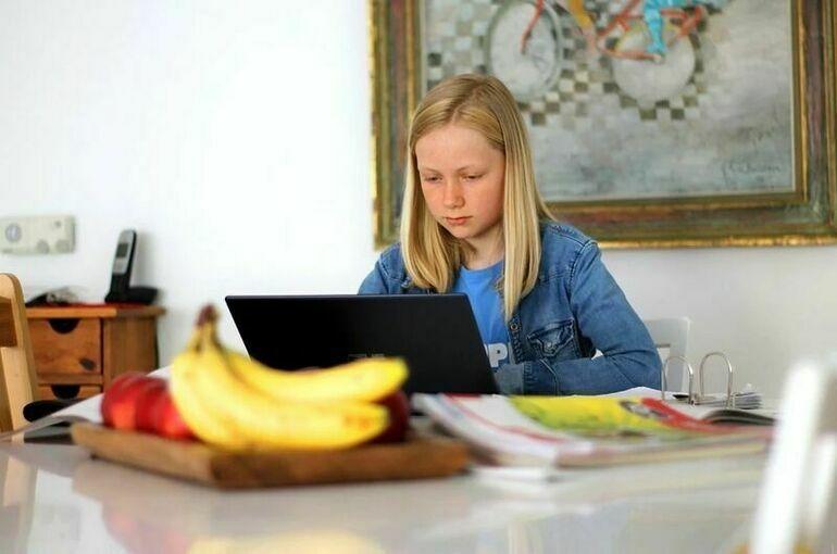 Школы с 2023 года смогут использовать в дистанционном обучении только государственные системы