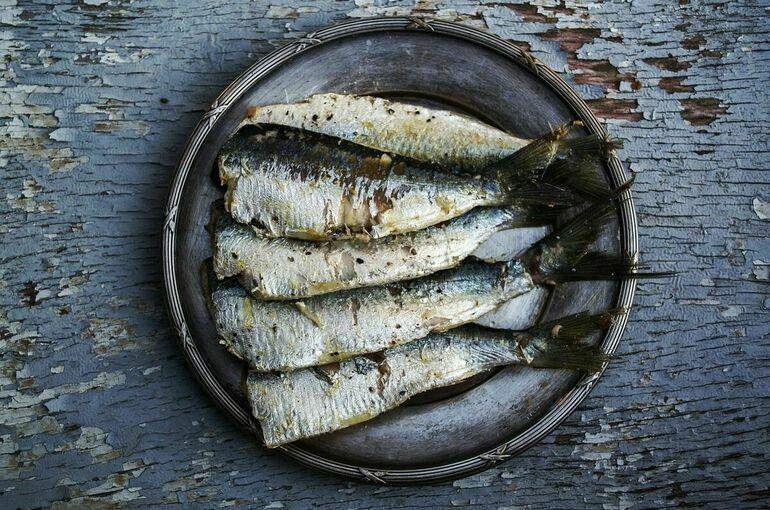 Диетолог перечислил полезные в осенний период виды рыб