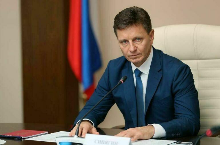 Губернатор Владимирской области Сипягин перейдёт на работу в Госдуму