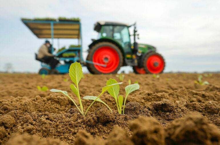 Землям сельхозназначения хотят найти хозяев