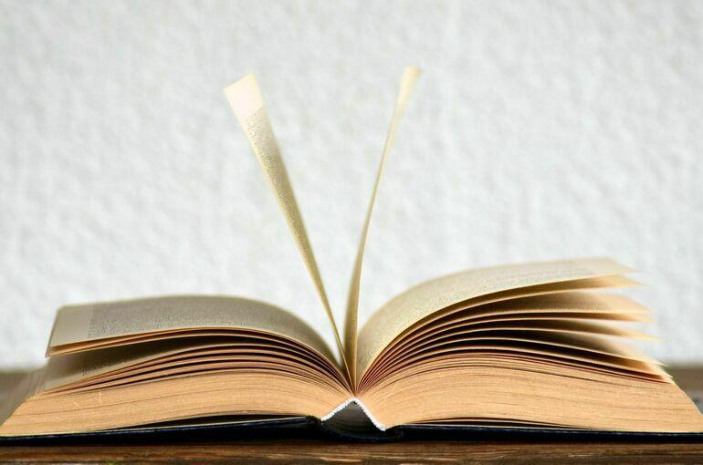 Минцифры будет определять госполитику в литературной сфере