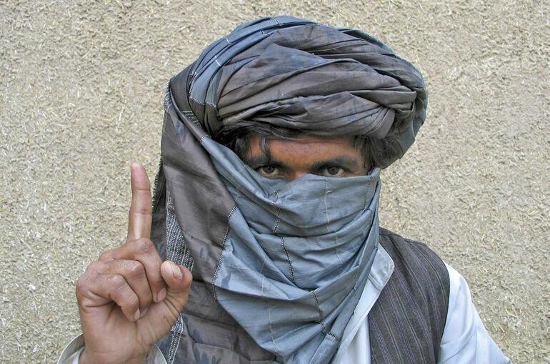 Молчание талибов