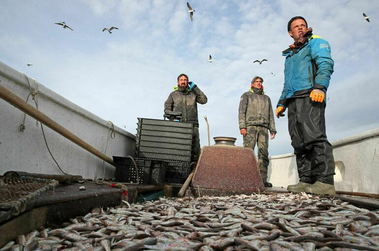 Выдачу разрешений на вылов рыбы предлагают упростить