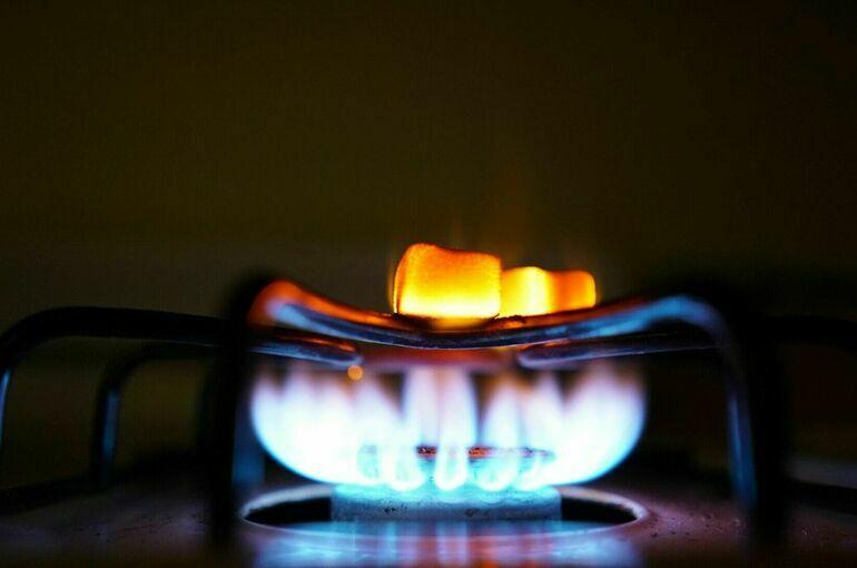 Депутат прокомментировал заявление о расследовании причин скачка цен на газ в Европе