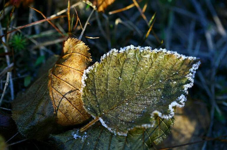 В Минприроды назвали сентябрь самым холодным за последние 25 лет