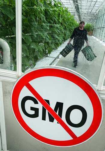 Альтернатива «химизированному продовольствию»