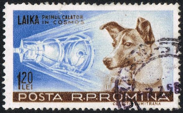 Лайка на почтовой марке